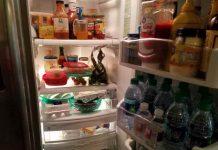 inside my refridgerator