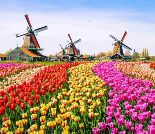 Why is Holland also called the Netherlands and the people there are called Dutch